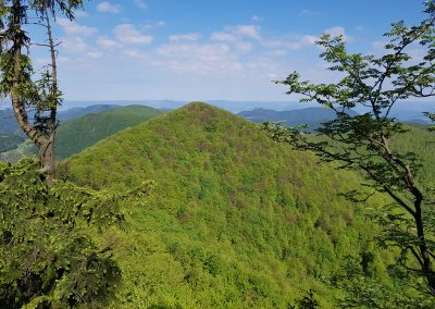 Zákon o ochrane prírody a krajiny: MŽP predkladá novelu bez ukončených rokovaní o hromadnej pripomienke, ktorú podporilo 30 000 občanov.